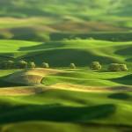 green-tilt