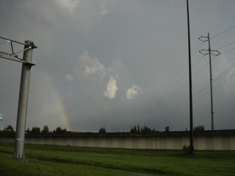 broward county rainbow