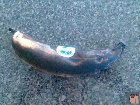plantain or banana