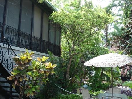 hemingway house 6