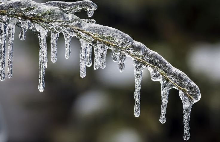 Image result for ice storm